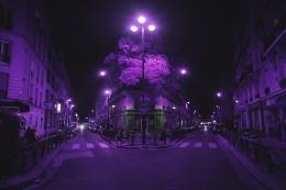 paris_rezzie_193